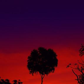 06.30PM by Angga Wiratryanjaya - City,  Street & Park  Vistas ( sawe village, sunset, sawe )