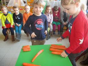 Photo: sorteren: grote en kleine wortels