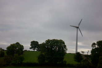 Photo: Wind are all over rural Ireland