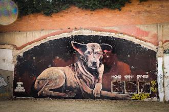 Photo: Графити