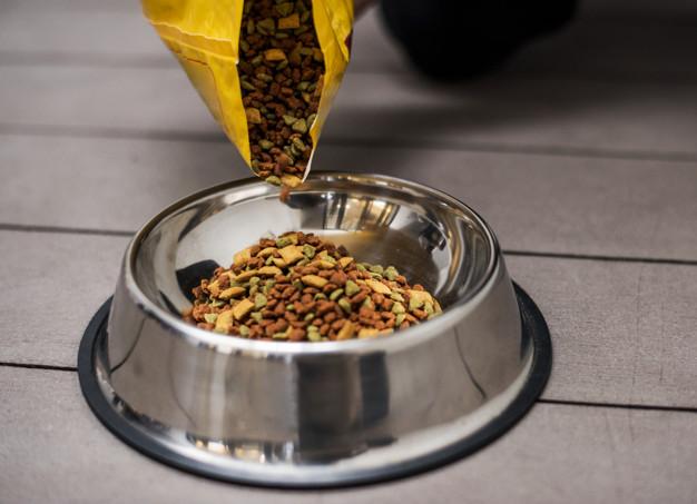 Cómo Cuidar a tu Perro con Alimentación