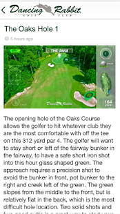 Dancing Rabbit Golf Course- screenshot thumbnail