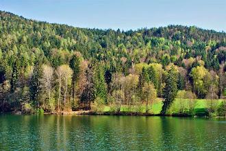 Photo: Blick im Frühjahr