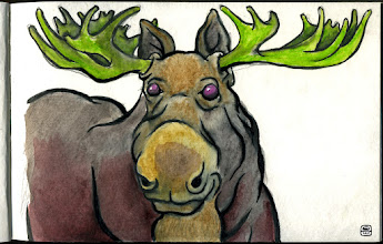 "Photo: ""Pink-Eyed Greenhorn"" (moose study)"
