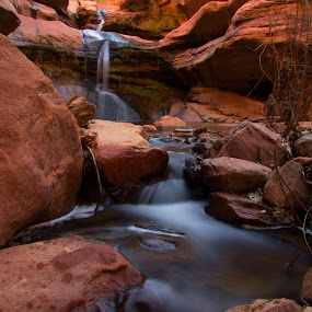 Pine Creek Falls by Stephen Berry - Landscapes Waterscapes ( pine creek, national park, falls, zion )