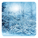 Snow Storm Live Wallpaper icon