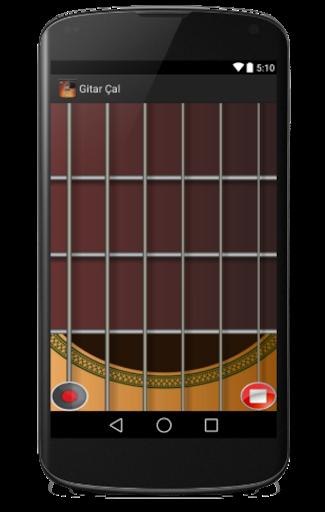プロフェッショナルギタープレイ