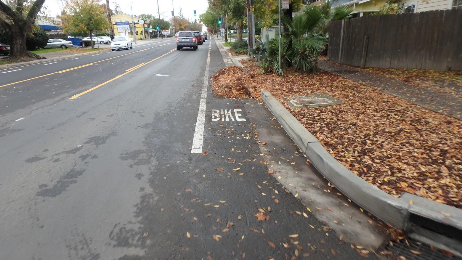 Leaf piles in the bike lane