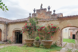 Photo: Roses in the courtyard