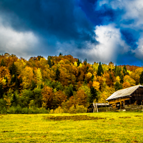 Old cabin in Bucovina by Alin Miu - Landscapes Mountains & Hills ( cabin, hills, autumn, landscape hdr, forest, yellow, woods )