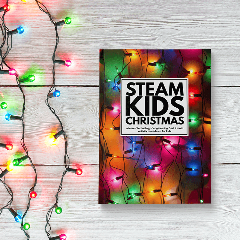 STEAM Kids Christmas Book with Lights compressed.png