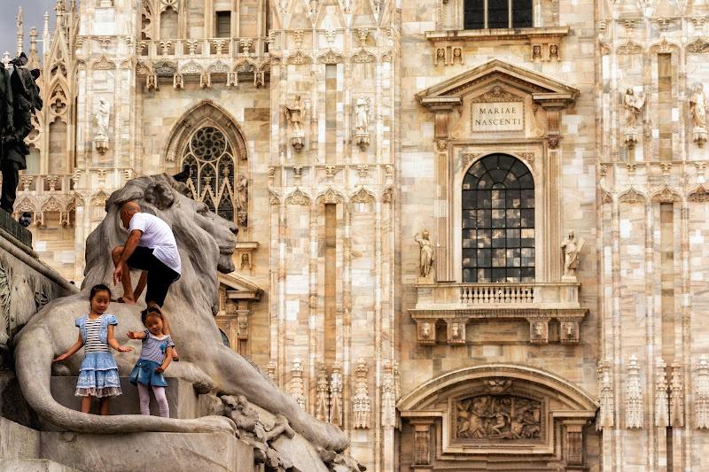 La scalata del leone di Concetta Caracciolo