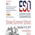ESO SUMMER SCHOOL 2017 icon