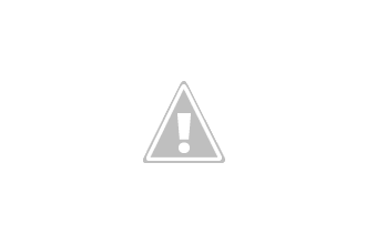Photo: African elephant (Loxodonta Africana) bull dusting himself. Side view, full body, trunk in the air, in front bushes behind animal bushland, Etosha, Namibia, Africa
