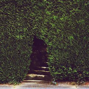 Secret Garden by Victoria Kovios - Buildings & Architecture Homes