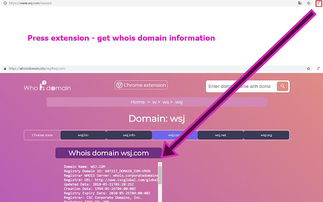 Whois domain lookup service