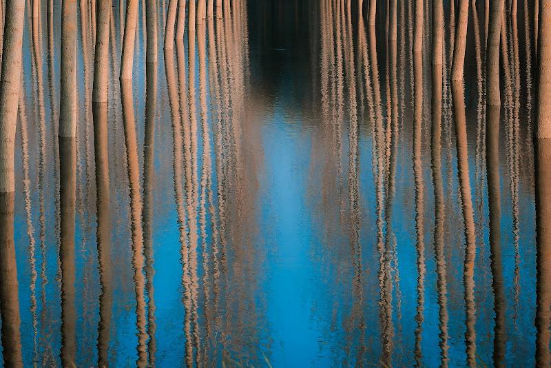 Con i piedi in acqua di Matteo Masini