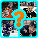 Guess The Hockey Player icon