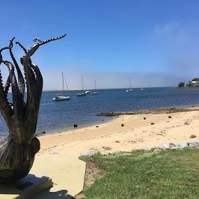 The Octopus by Dawn Simpson - Landscapes Waterscapes ( octopus, tourism, sculpture, river, sea, south coast )