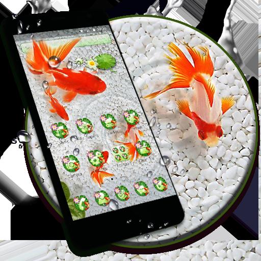 Koi Fish Lotus Theme