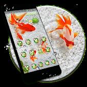 Tải Koi Fish Lotus Theme miễn phí