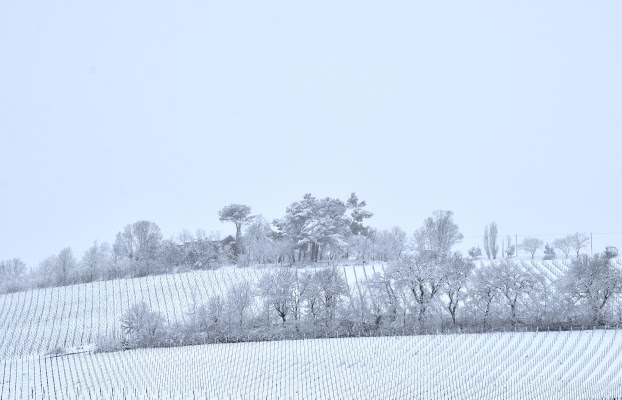 colline di s_ornella