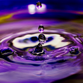 Purple Drop by Danny Andreini - Abstract Water Drops & Splashes