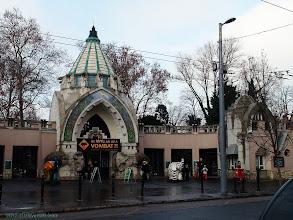 Photo: hungary, travel, zoological, zoo, park, garden, budapest