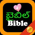 Telugu English Audio Holy Bible icon