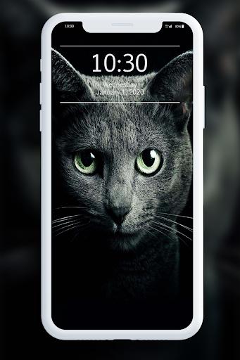 Black Wallpaper 1.1 screenshots 6