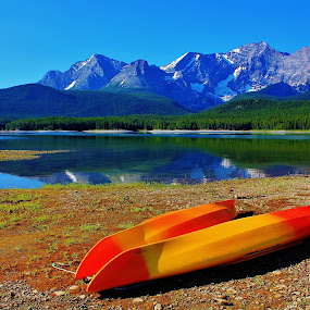 Rocky Mountain Summer by Laura Bentley - Landscapes Mountains & Hills ( mountains, canada, alberta, summer, lake )