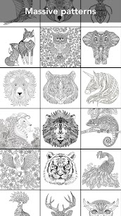 Animal Coloring Book 2