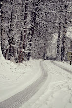 Photo: Near Czechowice-Dziedzice. By Sandra Pilarz