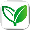 Home Remedies (Lite) icon