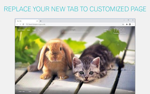 Cat and Rabbit Wallpaper HD Cats and Rabbits New Tab