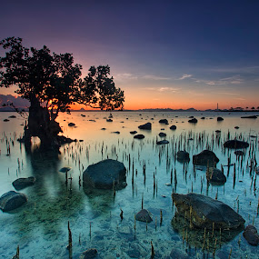Divine Colors by Hiram Abanil - Landscapes Sunsets & Sunrises ( pagbilao, sunrise )