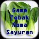 Game Tebak Nama Sayur Download on Windows