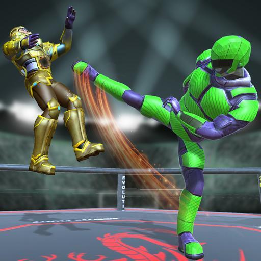 Robot Ring Fighter