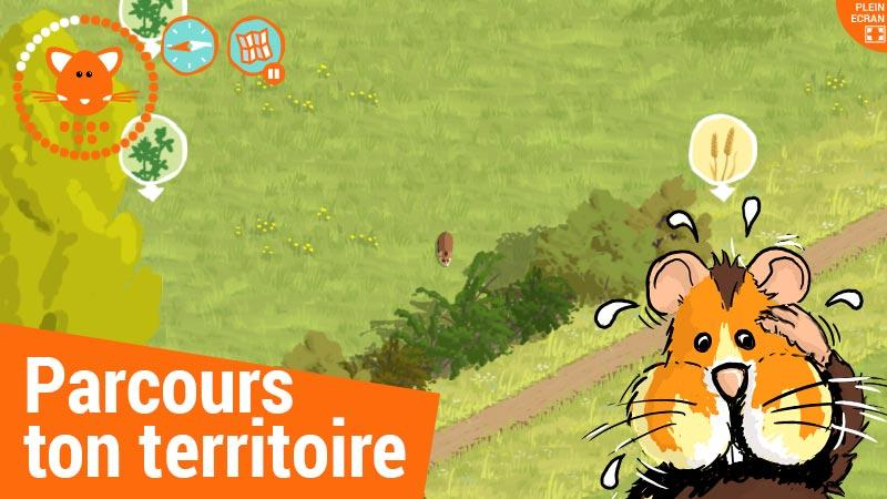 Dans la peau du Grand hamster- screenshot