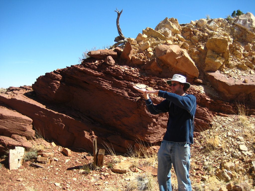 Photo: Shawn demonstrates how the ejecta blanket folds over, in front of a mining cut that exposed the entire overturned flap