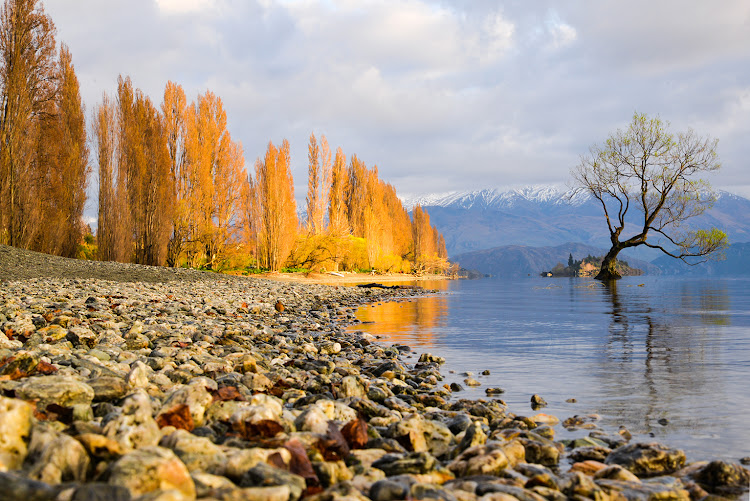 Lake Wanaka, New Zealand.