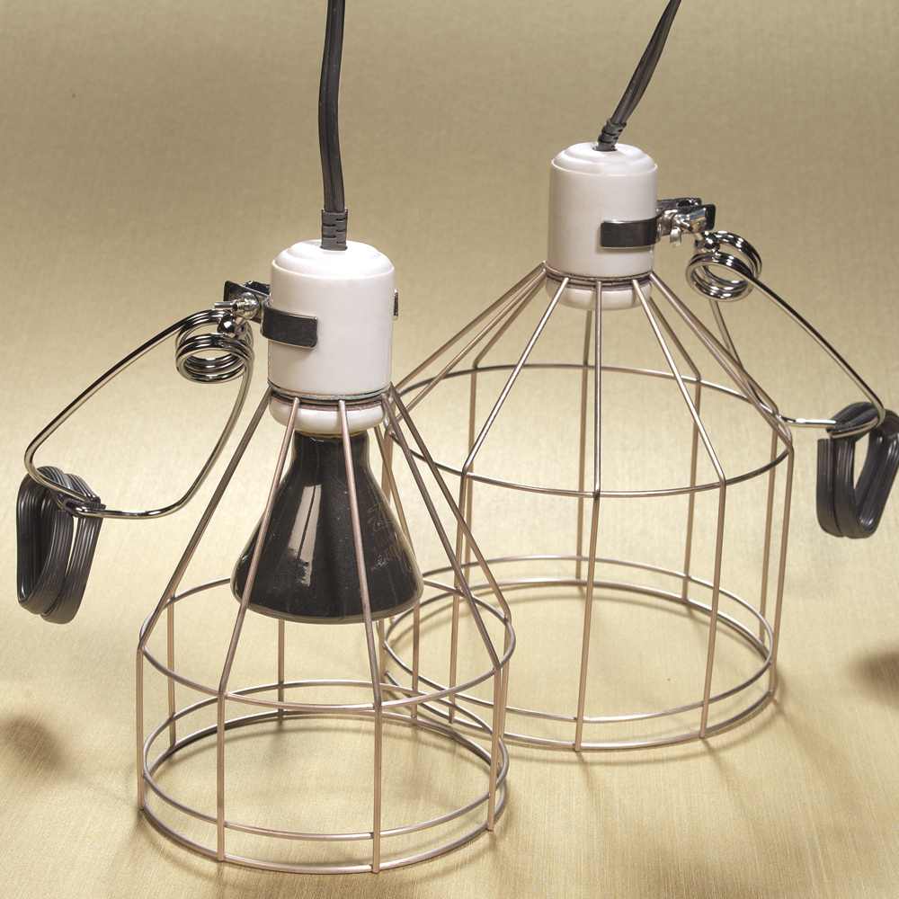 Wire light fixtures for reptiles