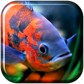 Aquarium 3D. Video Wallpaper