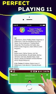 Dream11 Expert Prediction Tips, News And Teams 3
