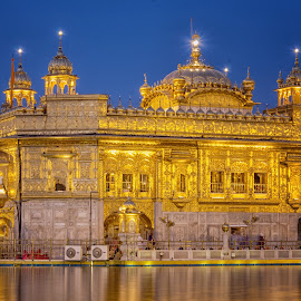 Golden Temple by KP Singh - Buildings & Architecture Places of Worship ( temple, punjab, sikhism, amritsar, golden )