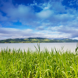 Lake Arenal by James Woodward - Landscapes Travel ( waterscape, grass, costa rica, clouds, lake )