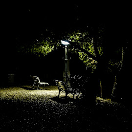 Light in darkness by Alen Zita - City,  Street & Park  Night ( croatia, brela, light, benches, park )