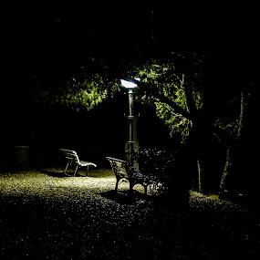 Light in darkness by Alen Zita - City,  Street & Park  Night ( croatia, brela, light, benches, park )