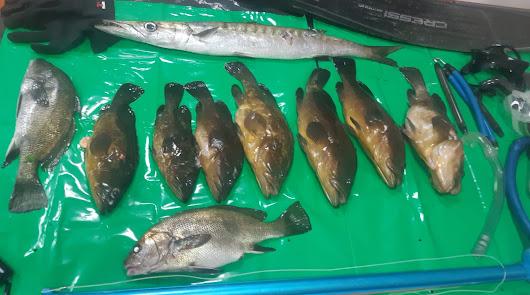 Sorprenden a dos furtivos realizando pesca submarina en Cabo de Gata