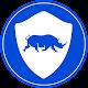 RobustVPN - Free Unlimited High Speed VPN apk